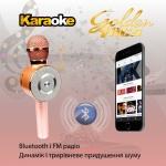 Бездротовий Караоке-Мікрофон Optima Wster MK-4 Pink
